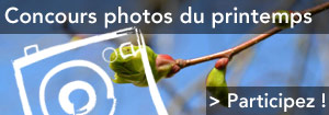Concours photos Les promesses du Printemps